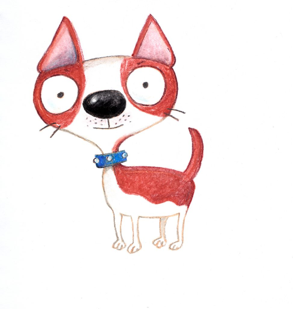 chico, small dog