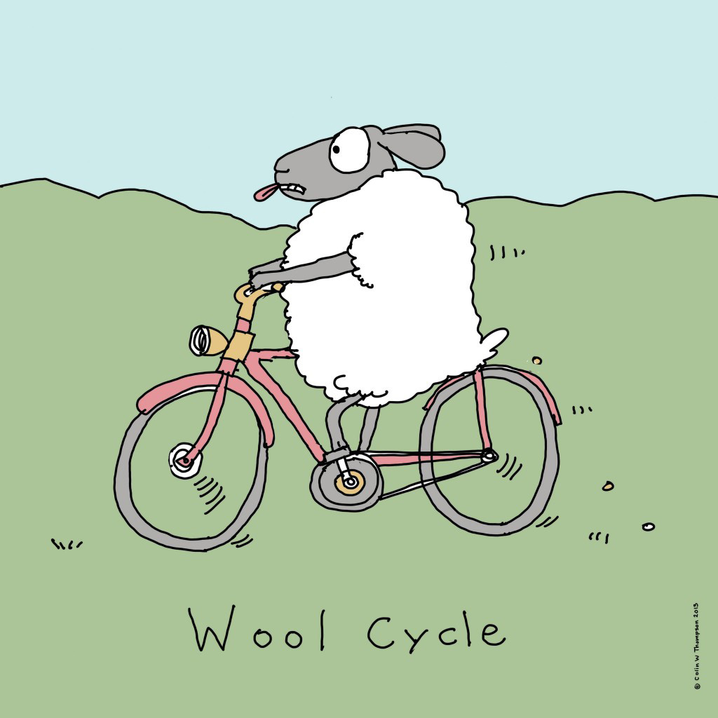 Wool Cycle