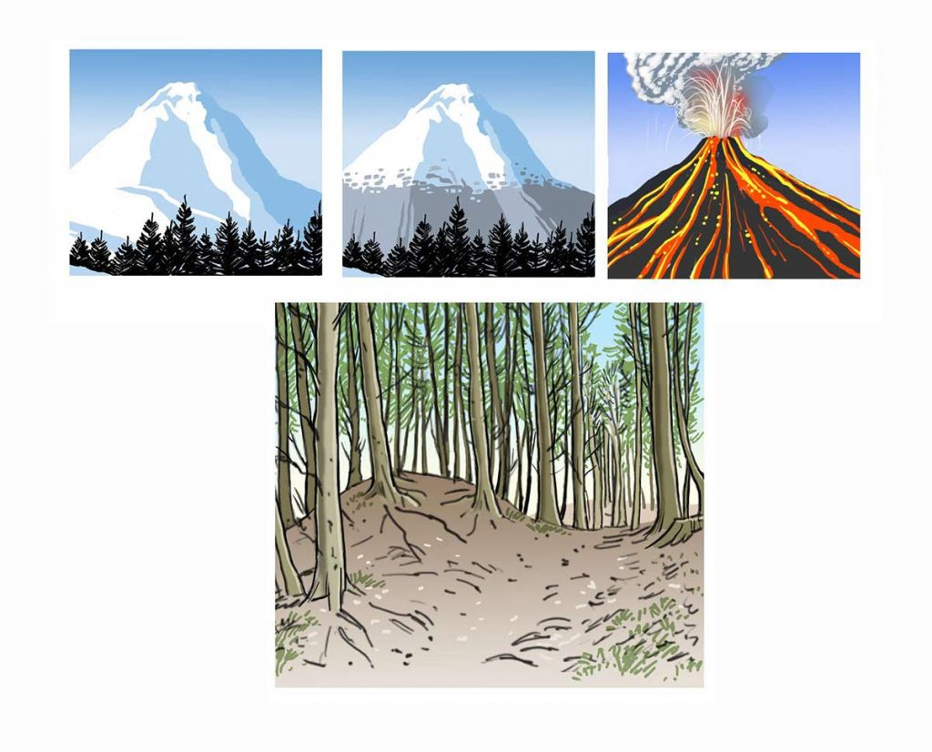 Mountains, trees, volcano illustration.