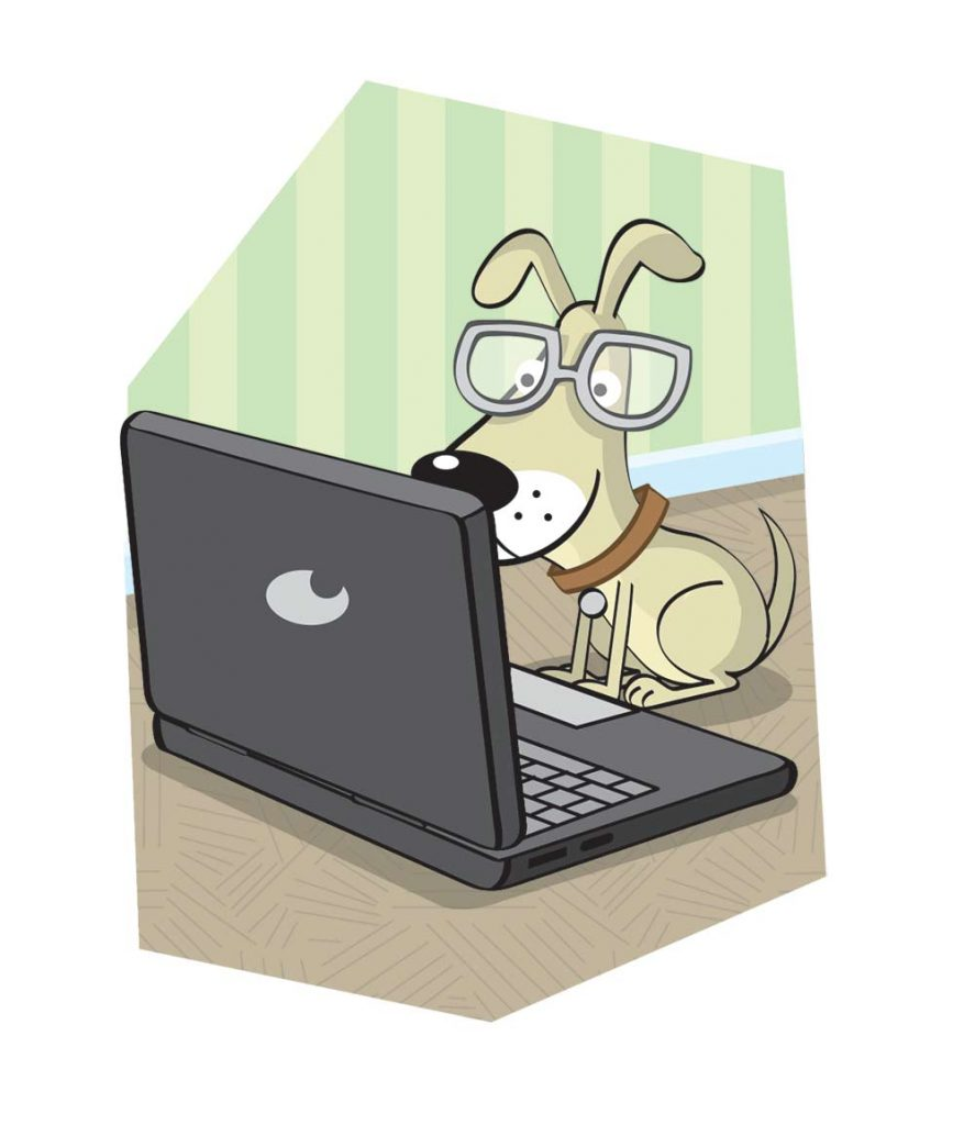 Clever dog on a laptop.