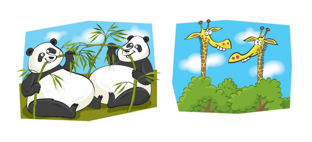 Pandas and giraffes